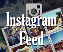 Social Instagram Feed