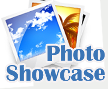 Social Photo Showcase
